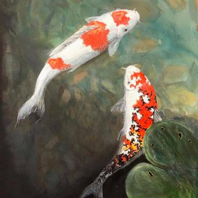 Koi Carp limited edition prints